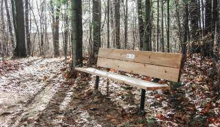Bench on Trails